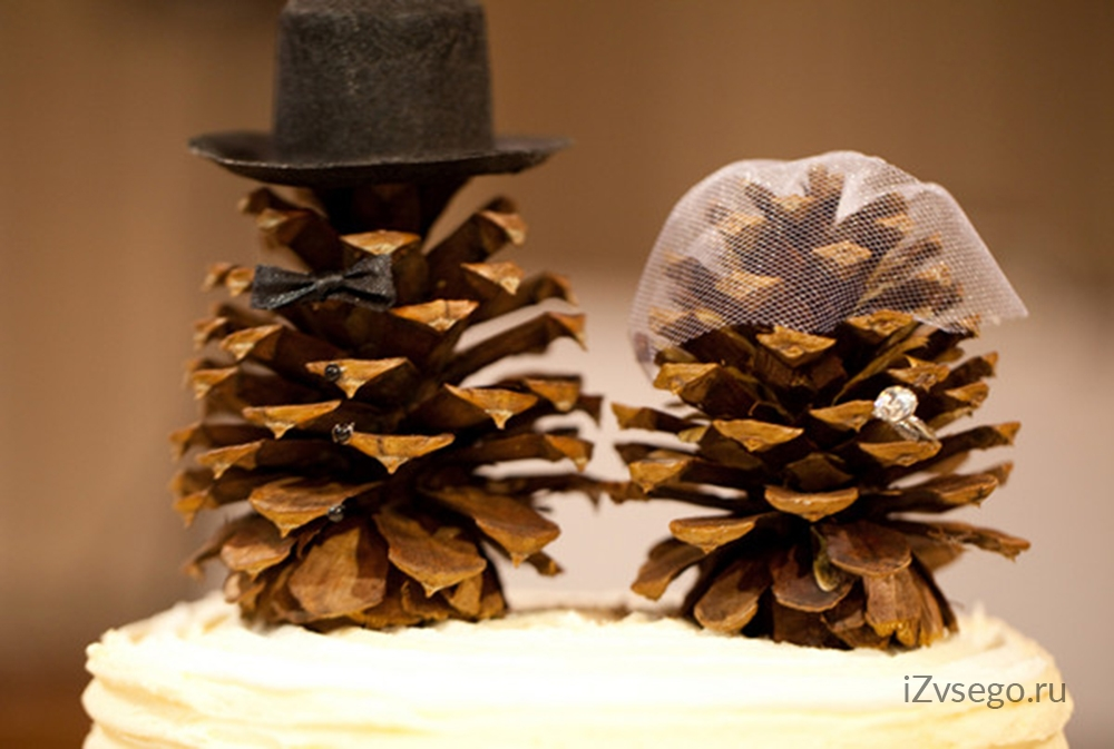 Фото шишек для свадьбы