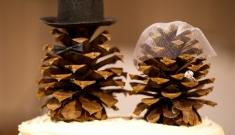 Идеи из сосновых шишек